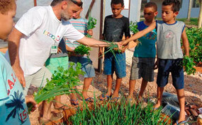 Projeto Plantando Saúde